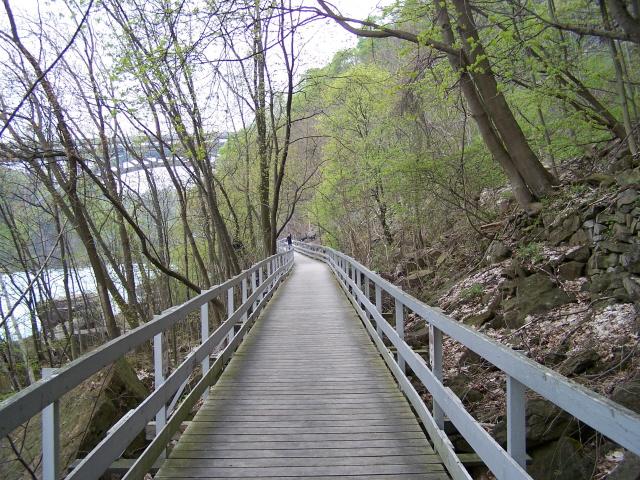 bridgesmaller.jpg